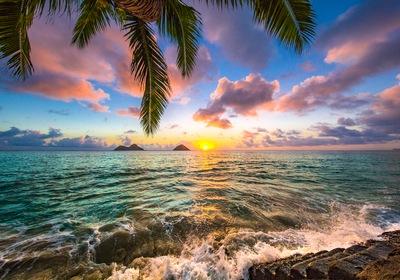 Aloha, Spring: A Foodie Trek Across Hawaii