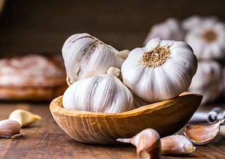 Gotta Have Garlic