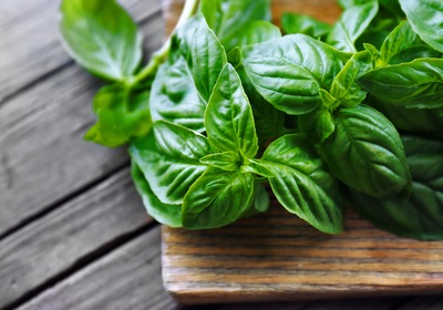 Why We Love Fresh Herbs
