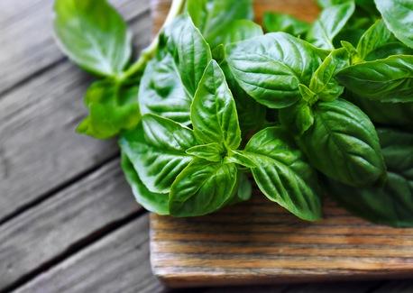 Why We Love Fresh Herbs
