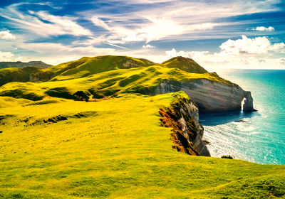 Where the Sunshine State Meets the Emerald Isle