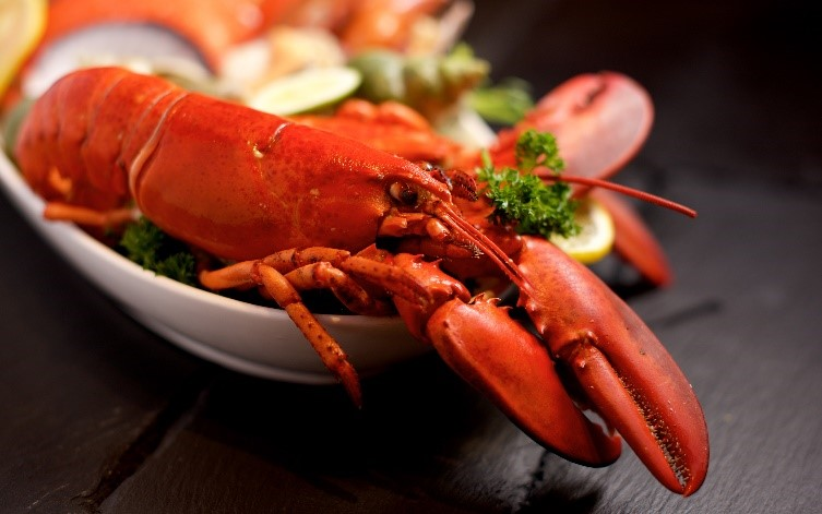 A History of Our National Love for Lobster